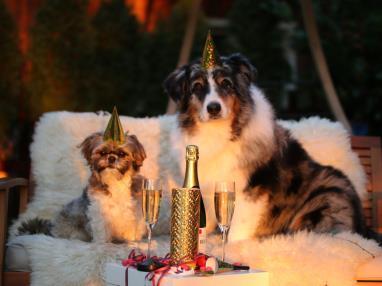 Nochevieja en Alcocéber